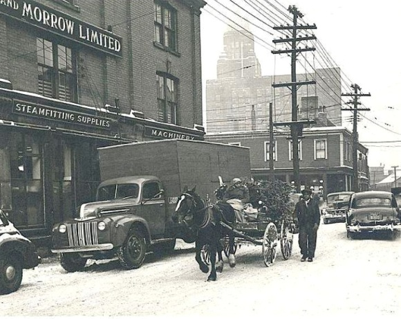 Christmas tree delivery, Lower Water Street, 1952