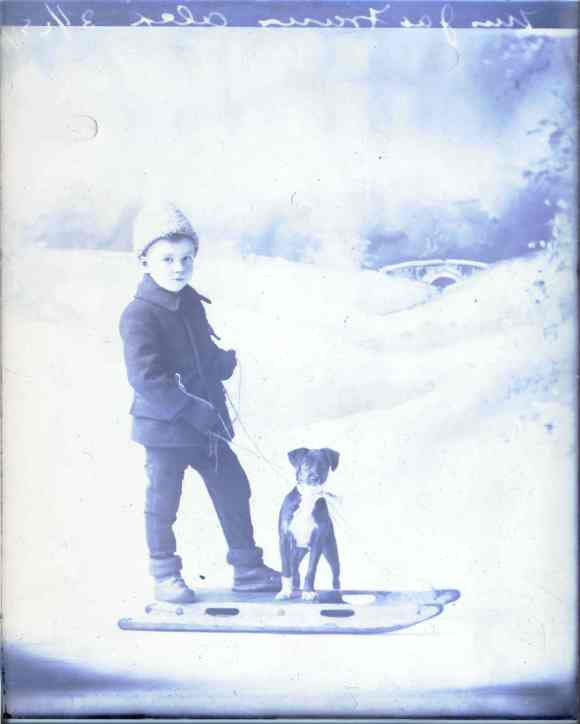 Portrait of Alex Fraser wearing a bouclé hat with his dog in Halifax, 1909