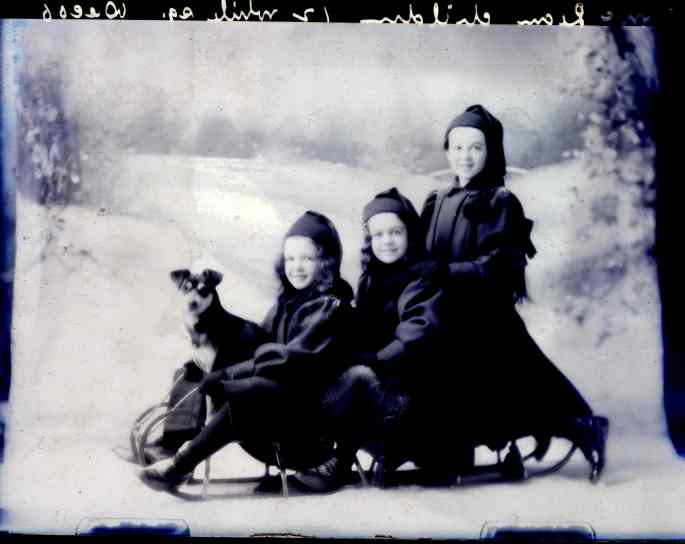 Mrs. McLean's kids and their dog ridin' dirty in Antigonish in 1906